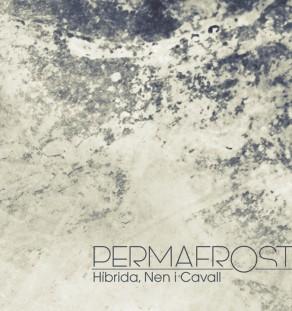 HNiC_Permafrost_cover